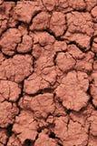 Terra vermelha rachada Fotos de Stock Royalty Free
