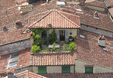 Terrace. In Lucca Italy Stock Images