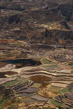 Terrace Farm in Colca Canyon Royalty Free Stock Photography