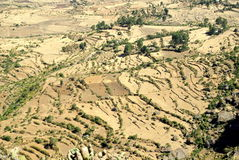 African landscapes. Terrace fields near the Blue Nile in Ethiopia Royalty Free Stock Images