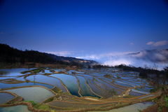 Terrace fields in Western China Royalty Free Stock Photo