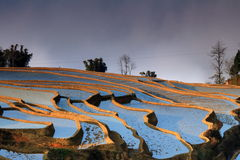 Terrace fields in Western China Royalty Free Stock Photos