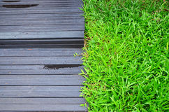 Terrace and green grass. Black terrace and green grass Stock Images