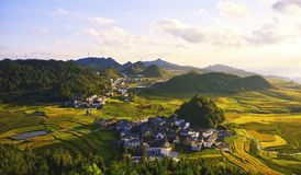 Terrace at guizhou china. The Beautiful layer of mountain and nature in rice field on terrace of Guizhou china Royalty Free Stock Photos