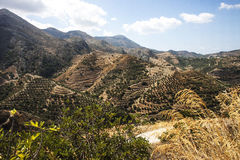Terrace hillsides at Polyrenia, Crete, Greece. View of terraced hillsides from path to Polyrenia, Crete, Greece Stock Image
