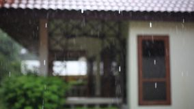 Terrace house, trees in the rain. Change focus stock video footage