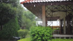 Terrace house, trees in the rain. Change focus