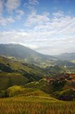 Terrace landscapes Stock Photo
