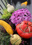 Terrace with a lot of flowers and vegetables Stock Images