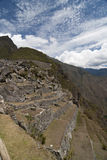The terrace in Machu Picchu Stock Images