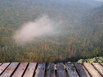 Terrace mountain forest fog and clouds Stock Photography