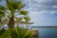 Terrace with palmtree Royalty Free Stock Photos