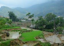 Terrace rice field at irrigate season Stock Photos