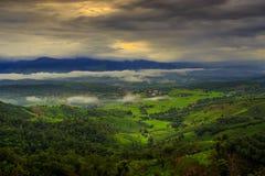 Terrace rice field over the mountain. Thailand Stock Photos