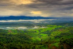Terrace rice field over the mountain. Thailand Royalty Free Stock Photo