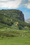 Terrace rice fields in Yunnan Royalty Free Stock Image