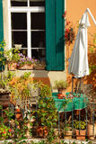 Terrace or roof gardening Stock Image
