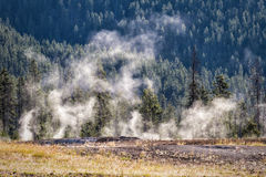 Terrace Springs. Steam arising from the Terrace springs, Yellowstone National Park stock photography