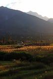 Terrace step farmland in remote Himalaya Royalty Free Stock Image