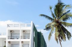 Terrace white color in hotel with a palm tree against blue sky. Concept of vacation, travel, recreation Royalty Free Stock Image
