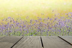 Terrace wood and Beautiful meadow for nature background Stock Photo
