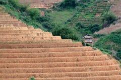 Terraced πεδία ρυζιού με το νερό και σπίτια στα ξυλοπόδαρα στη MU Cang Chai Στοκ εικόνες με δικαίωμα ελεύθερης χρήσης