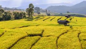 Terraced τομέας ρυζιού με το εξοχικό σπίτι στην απαγόρευση PA Bong Piang, Chiang Mai στην Ταϊλάνδη στοκ εικόνα