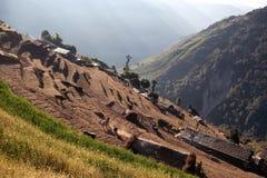 Terraced τομείς ρυζιού στο οδοιπορικό Annapurna στο Νεπάλ Ιμαλάια Στοκ εικόνα με δικαίωμα ελεύθερης χρήσης