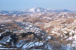 Terraced поле снежка Стоковая Фотография