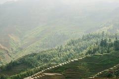 Terraced στοκ εικόνα