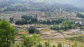 Terraced Farming Field in Southern China. Terraced farming field with trees and plants in mountain area in Summer.Farmers use plastic film to grow food.Taken in Stock Photography
