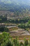 Terraced Farming Field in Southern China. Terraced farming field with trees and plants in mountain area in Summer.Farmers use plastic film to grow food.Taken in Royalty Free Stock Photography