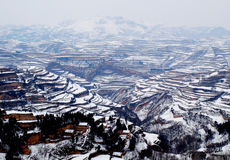 Terraced field of snow Royalty Free Stock Images
