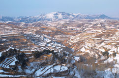 Terraced field of snow Stock Photography