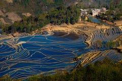 Terraced Field. In Yunyang, Yunnan provice of China Royalty Free Stock Image
