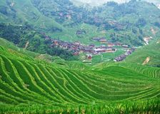 Terraced field and village Stock Photography