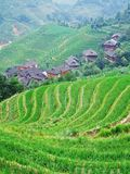 Terraced field and village Royalty Free Stock Images