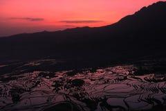 Terraced Field. In Yunyang, Yunnan provice of China Stock Image