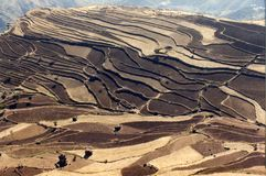 Terraced fields. Taken in Ibb province, China Royalty Free Stock Photos