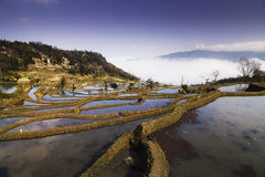 Terraced fields Royalty Free Stock Photography