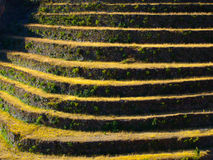 Terraced fields. As a part of incan agricultural system in Urubamba valley and Machu Picchu, Peru Royalty Free Stock Image