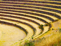 Terraced fields. As a part of incan agricultural system in Urubamba valley and Machu Picchu, Peru Stock Image