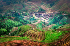 Terraced fields Stock Photos