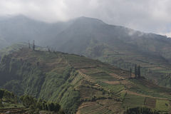 Terraced fields on the Dieng Plateau, Java Royalty Free Stock Images
