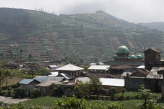 Terraced fields on the Dieng Plateau, Java Royalty Free Stock Photography