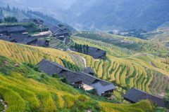Terraced fields with  houses of China's Yao nationality Stock Photography