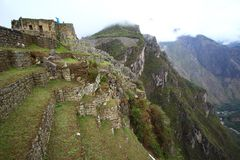 Terraced Fields of Machu Picchu Royalty Free Stock Image