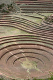 Terraced Fields of Moray. Sacred Valley in Peru Royalty Free Stock Photography