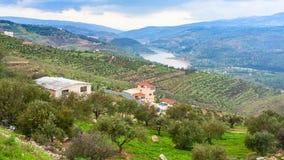 Terraced fields in valley Zarga River in Jordan Stock Photography