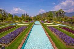 Terraced gardens in the botanical garden of Villa Taranto in Pallanza, Verbania, Italy. Royalty Free Stock Photos